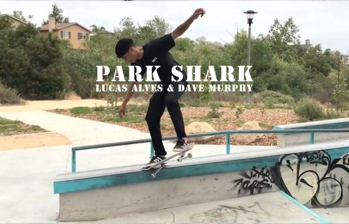LOWCARD Park Sharks…